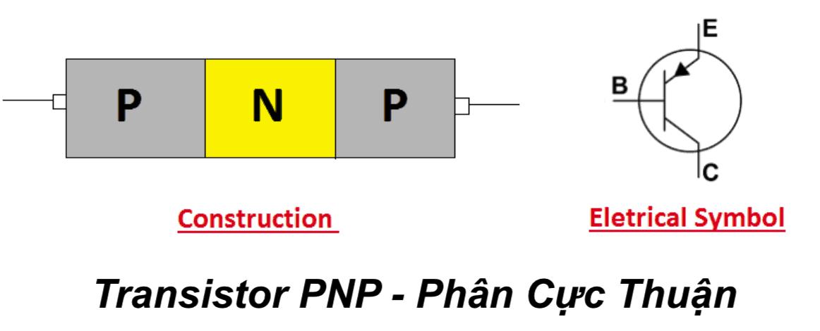Transistor PNP – Phân Cực Thuận